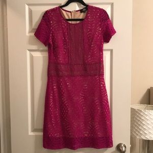 ABS Hot Pink Lace Dress